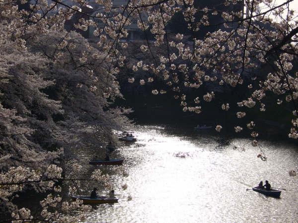 Lago de Kitanomaru Koen, Tokio