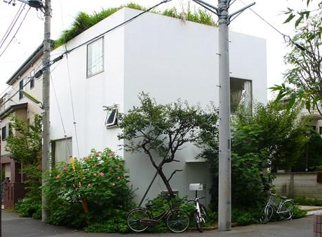 Casa en un campo de ciruelos. Kazuyo Sejima and  Associates ©