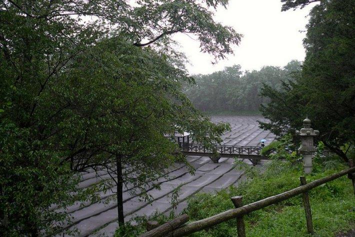 Cultivos de wasabi Daio en Nagano. Localización de la película Los Sueños de Kurosawa 1